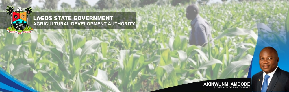 Agricultural Development Authority
